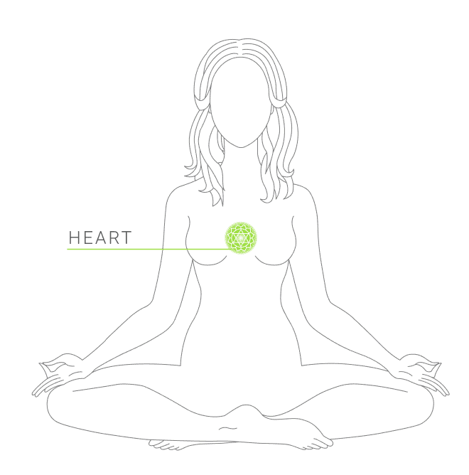 Indicating the location of the heart chakra symbol on a female body diagram in a sitting lotus position.